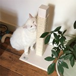 Wooden cat scratcher for cats handmade