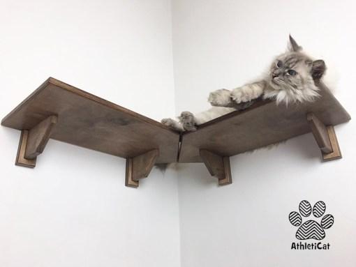 Cat corner shelf