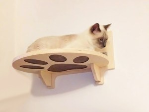 cat shelf with carving