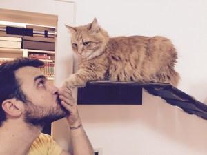 Cat behaviour daddy