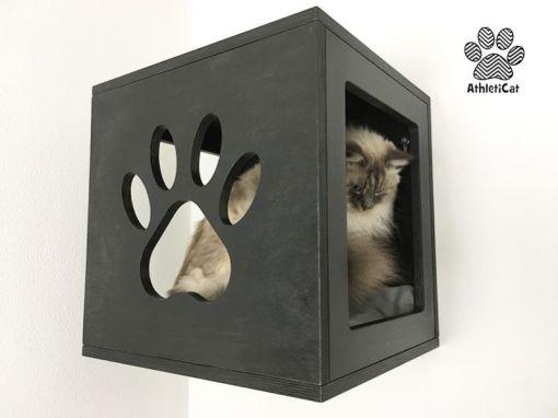 cat cube black