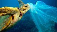 Σε νεκρή θάλασσα μετατρέπεται η Μεσόγειος