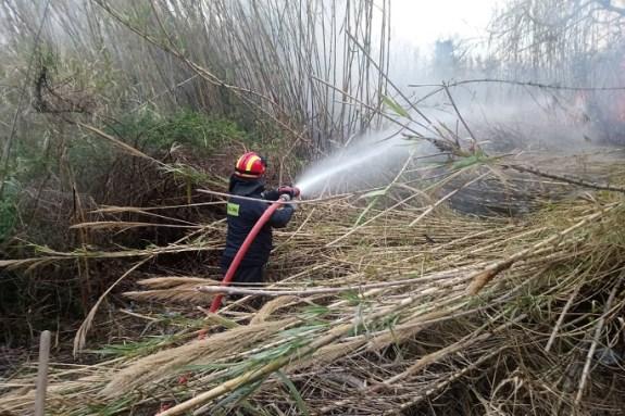 Κάηκαν 4 στρέμματα από πυρκαγιά σε Αγια Γαλήνη και Κρουσώνα