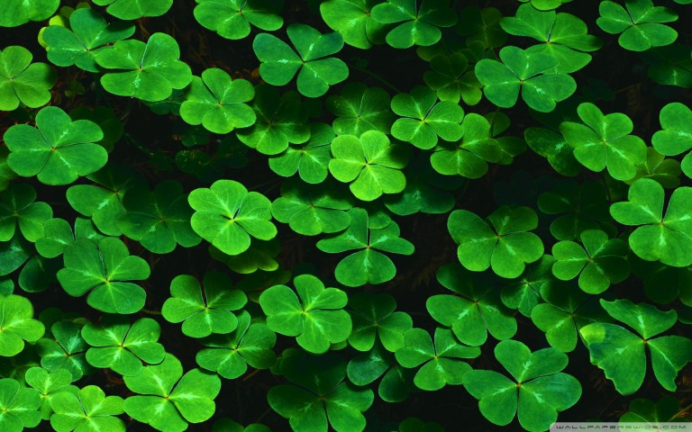 st patricks day lucky 1920x1200 wallpaper388507