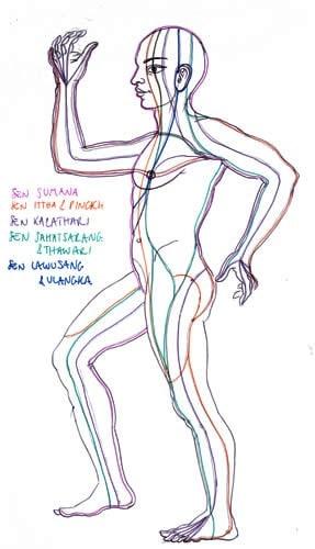 Lignes énergie SEN en massage thaï