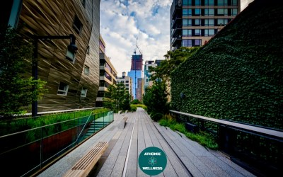 Découvrir Manhattan en courant – The High Line