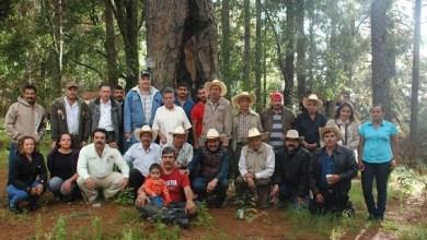 """Valentín González Aguilar, del grupo Ggavatt """"La Villita"""", informó que este organismo se compone de 19 integrantes y tiene como objetivo propiciar la participación y organización de los productores agropecuarios"""