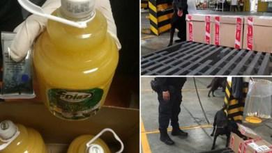 En un comunicado, la Comisión Nacional de Seguridad (CNS) informó que ello se derivó de revisiones a negocios de paquetería en Morelia, Michoacán