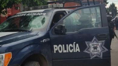 En el operativo conjunto participaron fuerzas federales y estatales