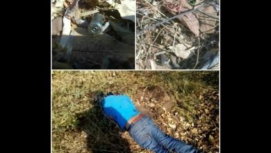 Al lugar de desplazaron unidades de la Policía Michoacán, los cuales confirmaron que se trataba de un hombre de aproximadamente 25 años de edad, tez morena, vestía pantalón azul de mezclilla, playera azul y tenis de color café