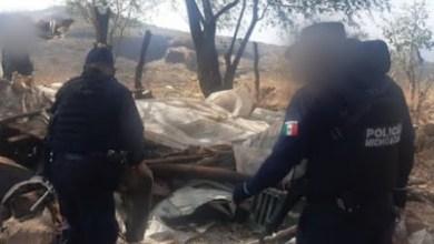 destruyen campamento, Michoacán