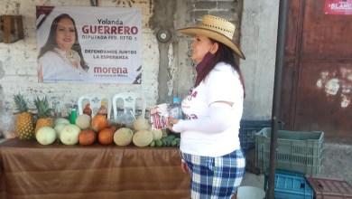 Yolanda Guerrero, Morena