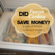 Did Freezer Cooking Save Money? (A Year of Freezer Cooking in Review)