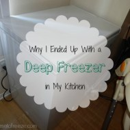 How I Ended Up With a Deep Freezer in My Kitchen