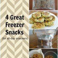 4 Great Freezer Snacks