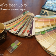 What we've been up to (Moving at 8 months pregnant…again)