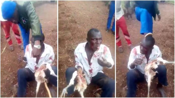 Man forced to eat live chicken after he was caught stealing