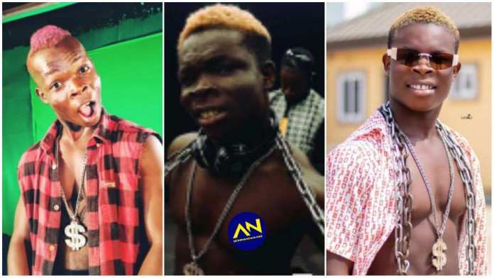 AY Poyoo receives hot slaps for flaunting a mansion that belonged to someone [Video]