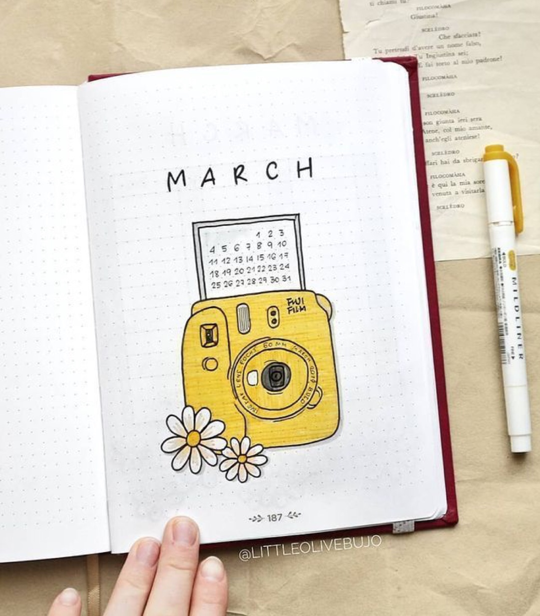 yellow camera, cover bujo, flowers