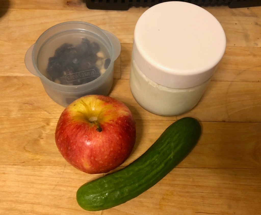 Homemade goat milk yogurt / homemade trail mix/ apple / cucumber