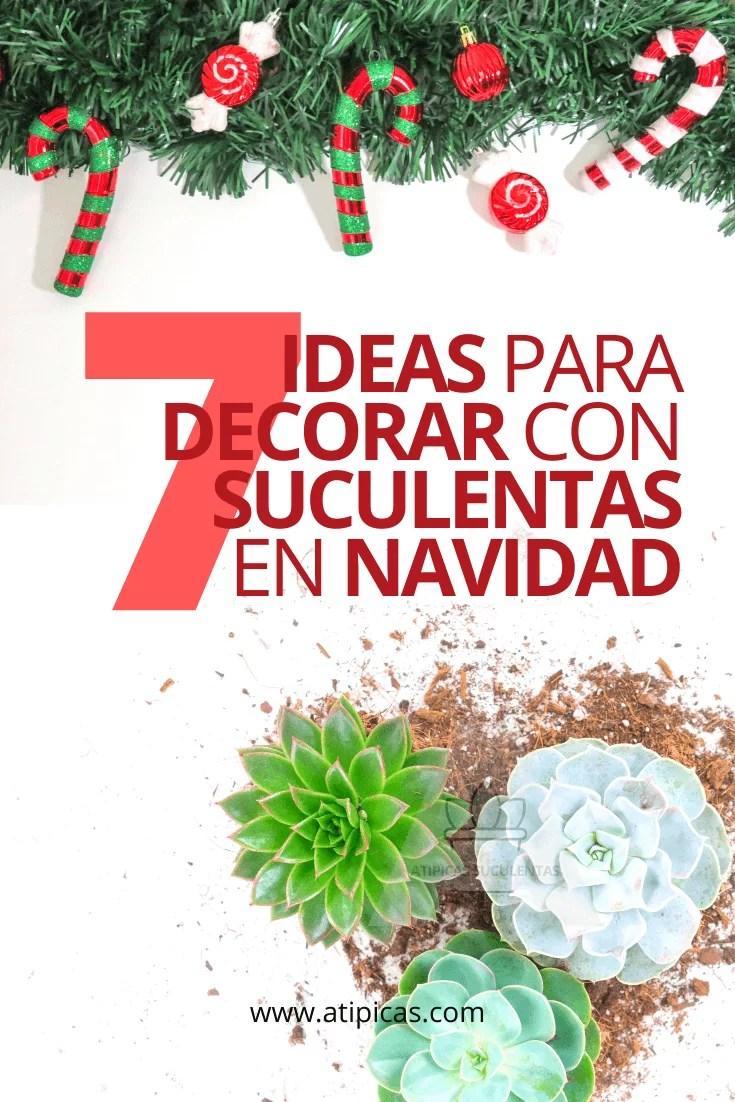 7 ideas para decorar con suculentas en Navidad