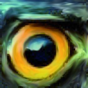 ojo avizor