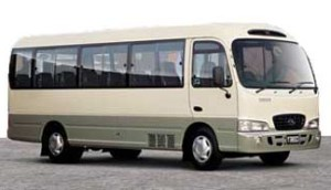 25 passengers Bus