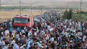 migratia musulmana