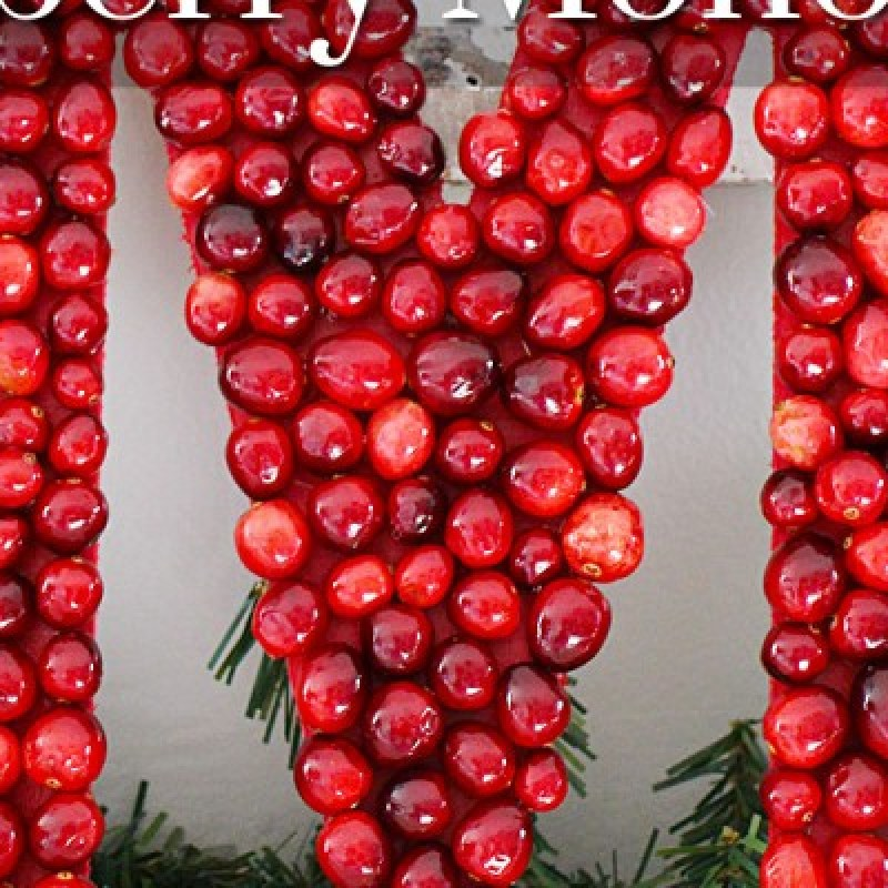 This beautiful DIY Cranberry Monogram is perfect for leaning on the mantel, hanging as a wreath, or displaying on your favorite credenza. /// by Atkinson Drive