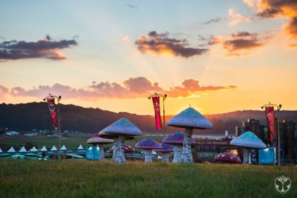 TomorrowWorld Campgrounds