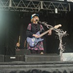 Joy Formidable (13)
