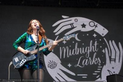 Midnight Larks