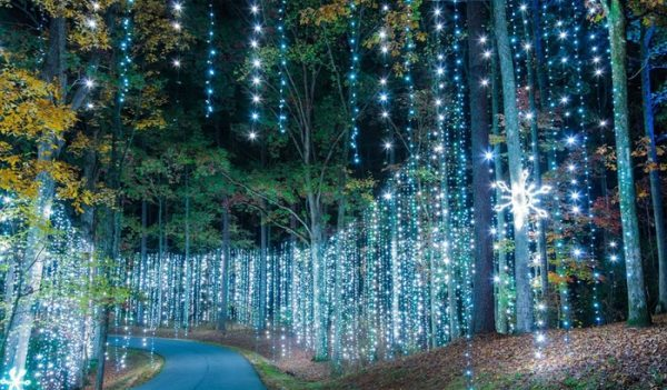 Magical curtain of lights at Callaway Gardens