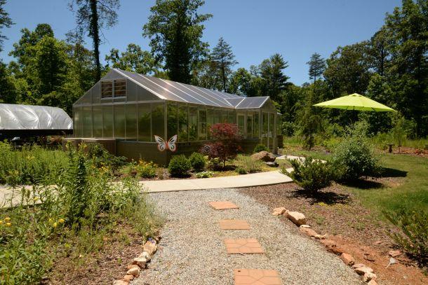 butterfly conservatory in Dahlonega, GA