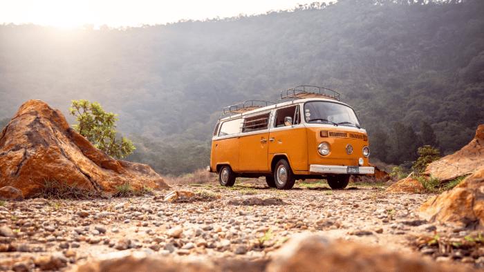 différents modèles du combi VW
