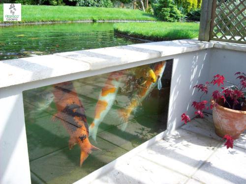 Building Raised Koi Pond