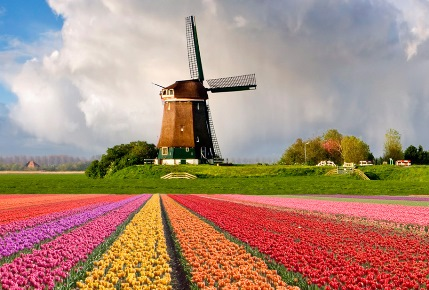 "Asal kata ""Belanda"""