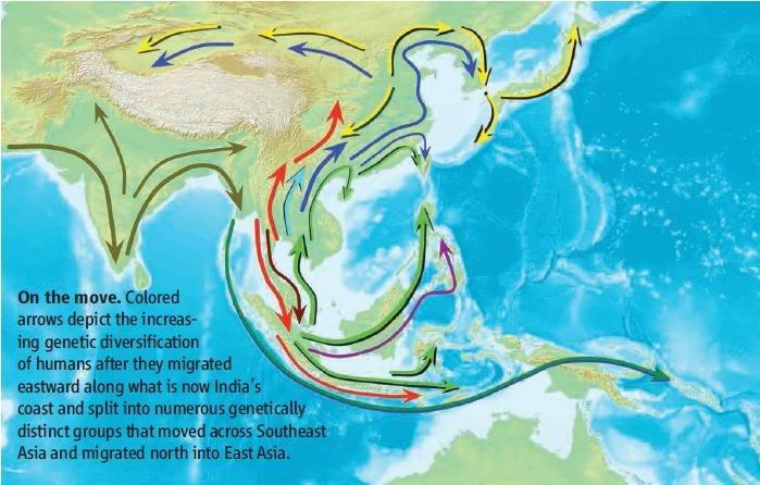 Asal Bangsa Nusantara  …