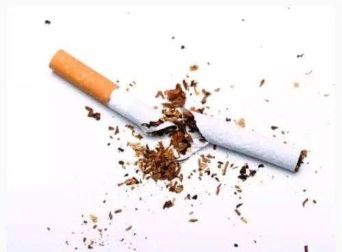 Merokok Dapat Pengaruhi DNA Manusia. …