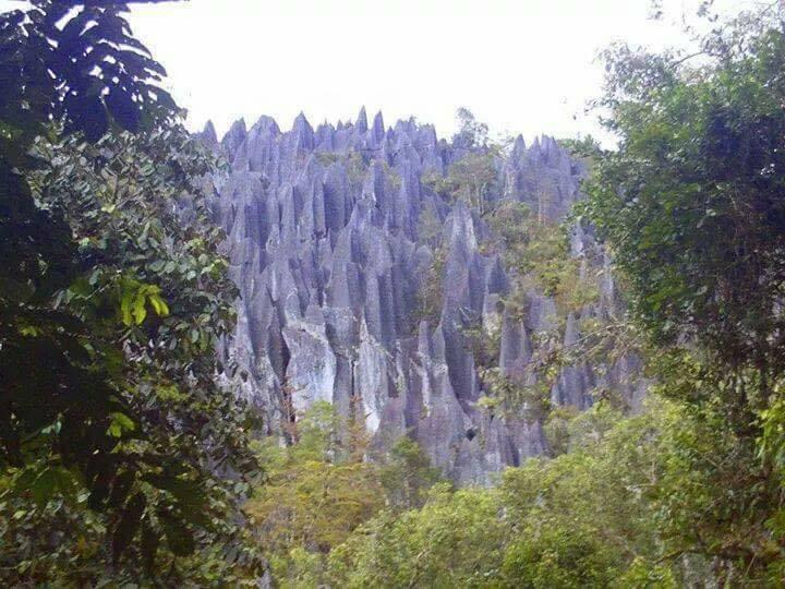 Situs Kota Purba Luwu Timur, Sulawesi Selatan