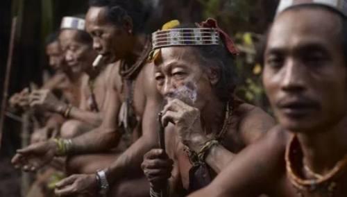 5 Hal yang Membuat Suku Dayak Disegani Dunia. …