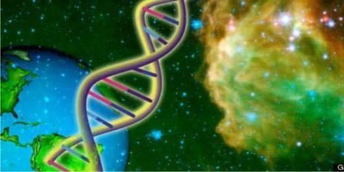 DNA adalah suatu asam nukleat yang menyimpan …