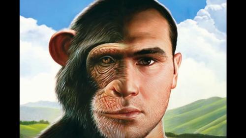 Peradaban hanya bisa dibangun oleh manusia bukan …