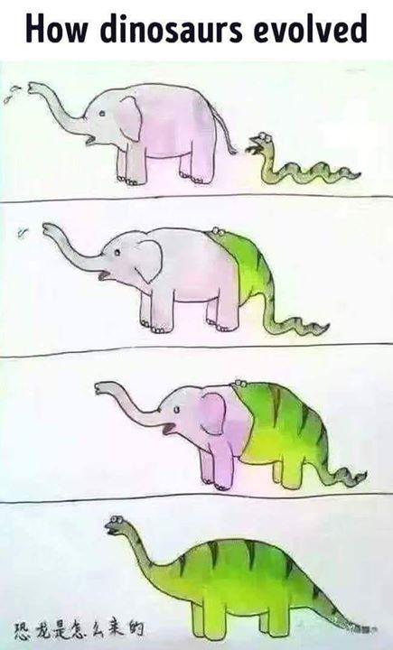 lebih logis ini daripada teori evolusi darwin..