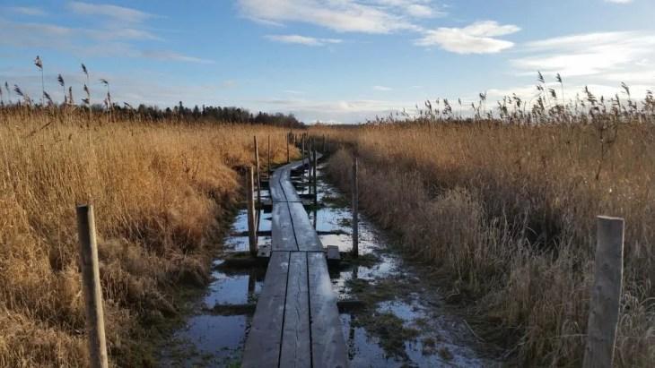 natural-reserve
