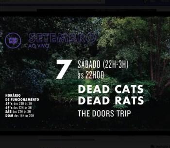 MUSIC | Dead Cats Dead Rats: The Doors Trip | Campo Grande | TBD @ Popular Alvalade | Lisboa | Lisboa | Portugal