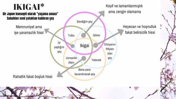 ikigai japonların mutluluk sırrı