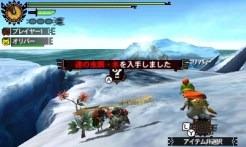 monster-hunter-4-insect-staff-10