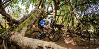 Expert Advice For A Novice MTB Rider