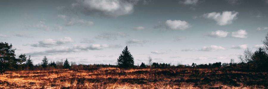 autumn-clouds-dark-2305169